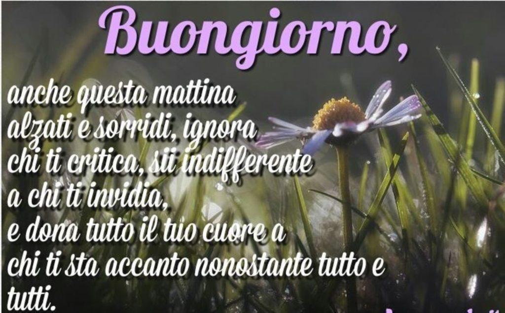 Foto-Buongiorno-Whatsapp-Immagini_008-1024x636