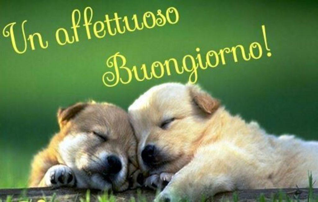 Foto-Buongiorno-Whatsapp-Immagini_021-1024x651