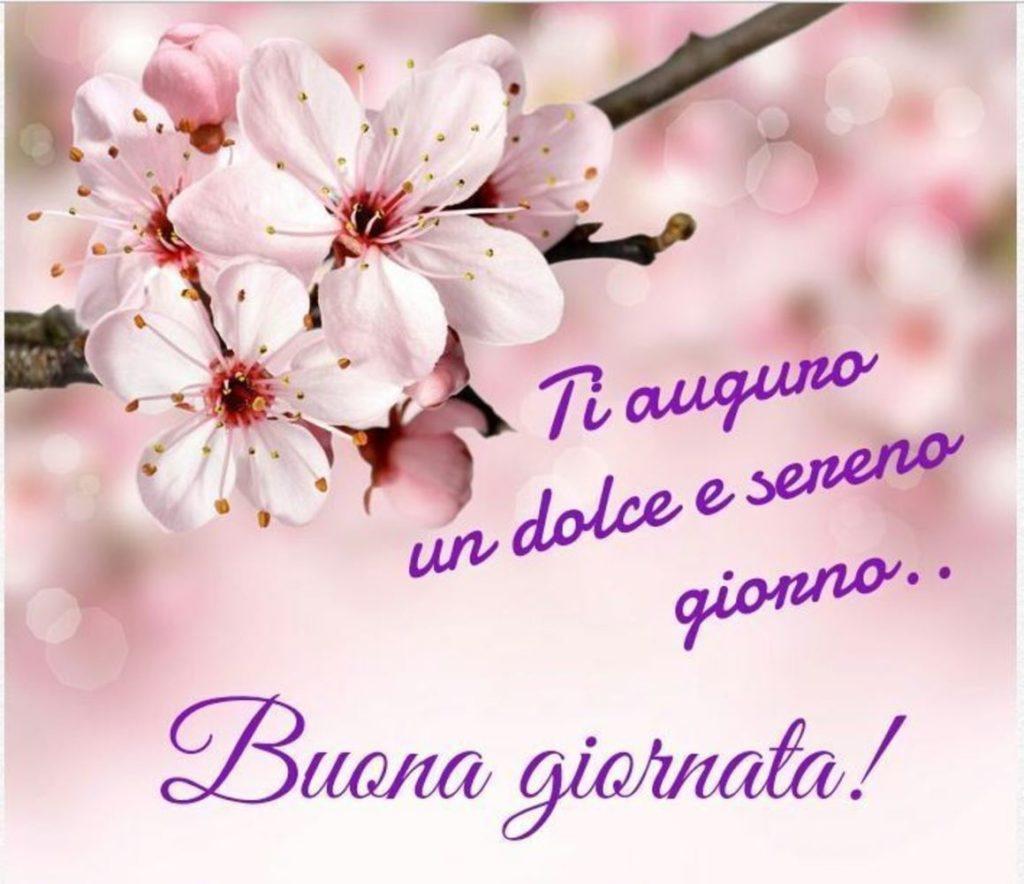 Foto-Buongiorno-Whatsapp-Immagini_023-1024x884