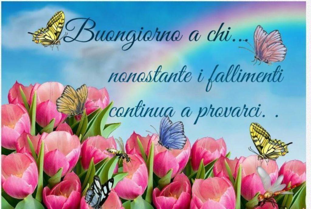 Foto-Buongiorno-Whatsapp-Immagini_032-1024x690