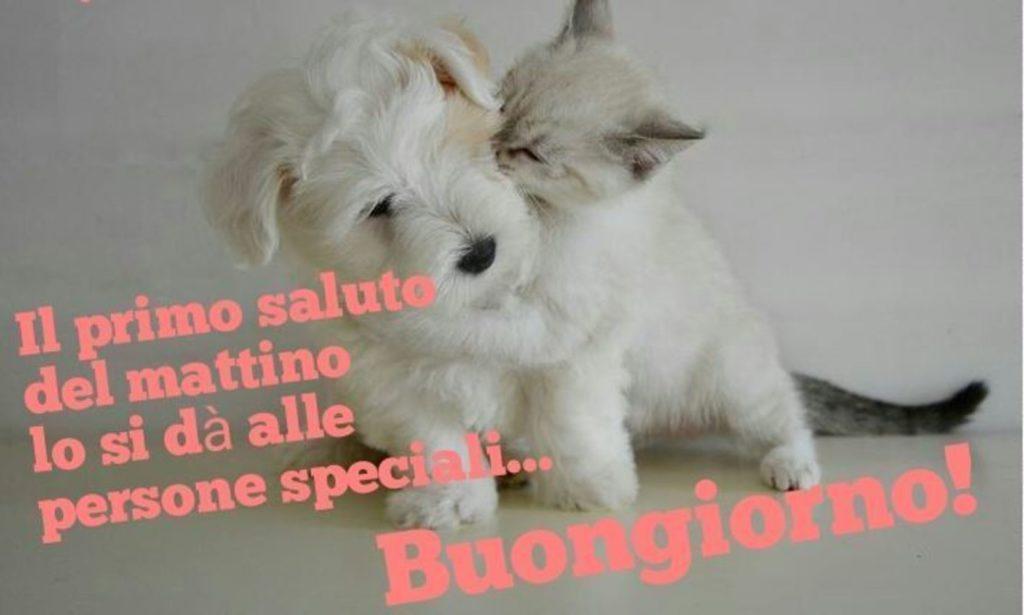 Foto-Buongiorno-Whatsapp-Immagini_038-1024x615