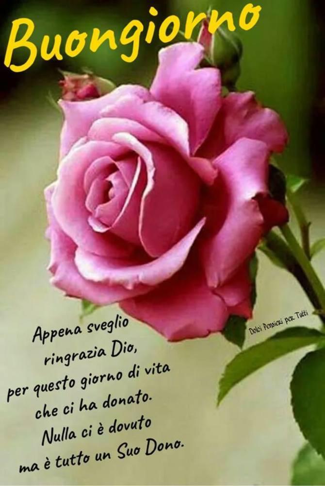 Foto-Buongiorno-Whatsapp-Immagini_040