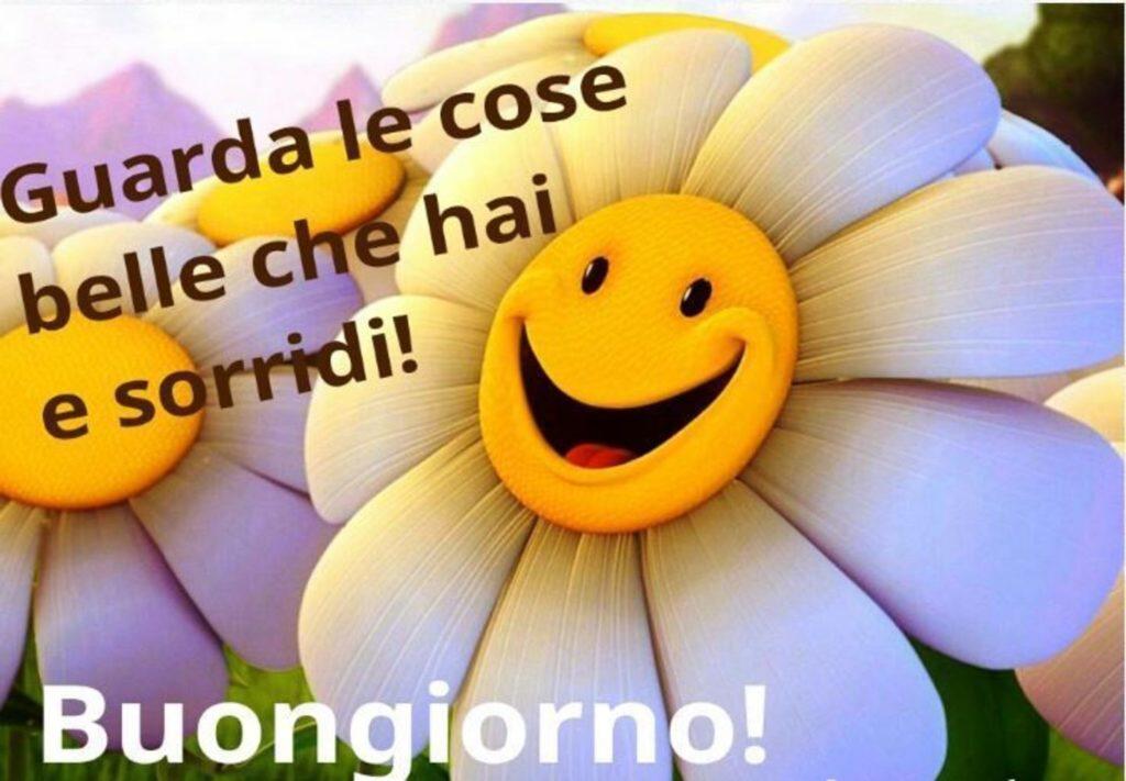 Foto-Buongiorno-Whatsapp-Immagini_049-1024x711