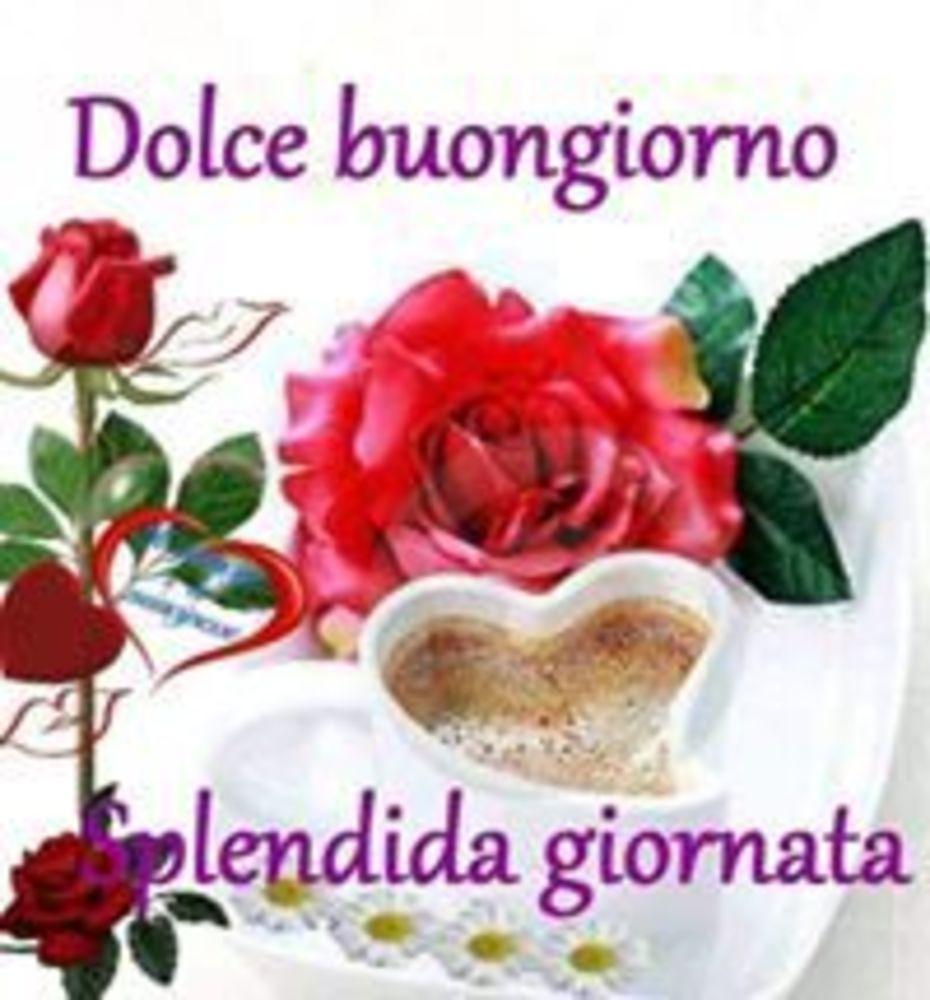 Foto-Buongiorno-Whatsapp-Immagini_062