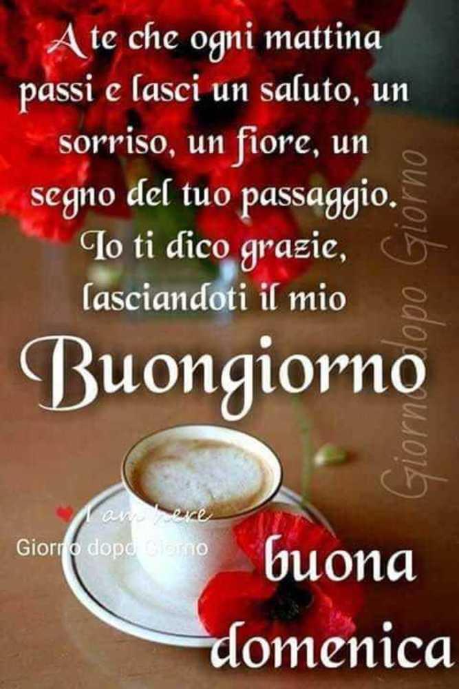 Foto-Buongiorno-Whatsapp-Immagini_069