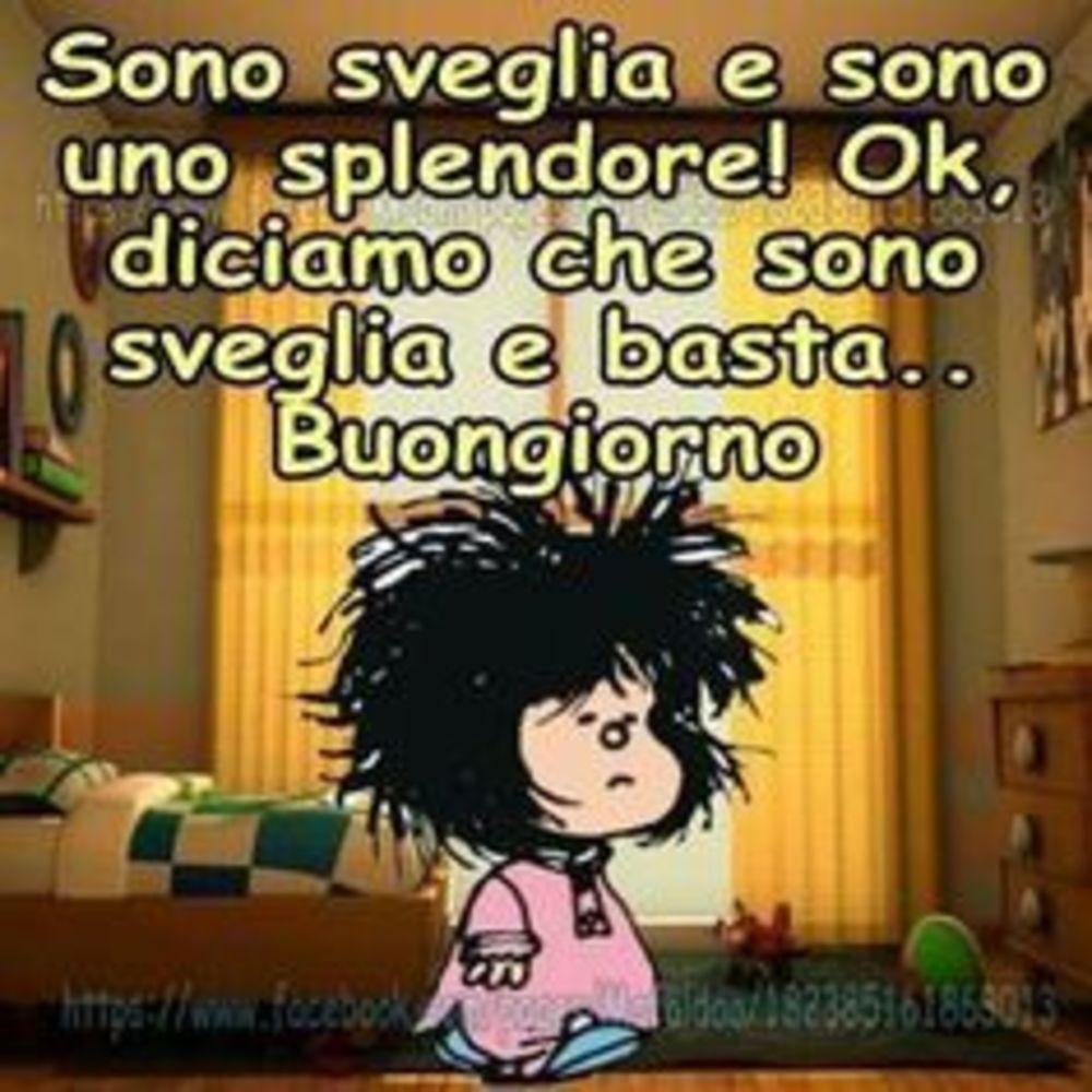Foto-Buongiorno-Whatsapp-Immagini_091