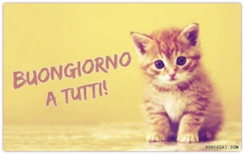 Foto-Buongiorno-Whatsapp-Immagini_104-1024x646