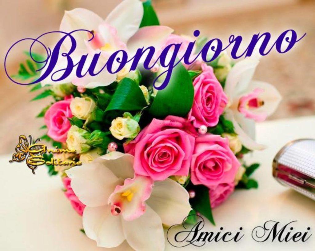 Immagini-Buongiorno-Belle_0006-1024x816