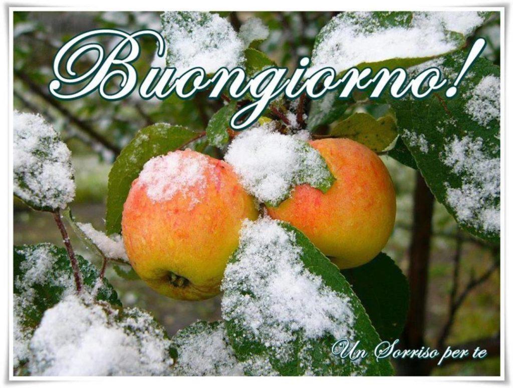 Immagini-Buongiorno-Belle_0015-1024x775