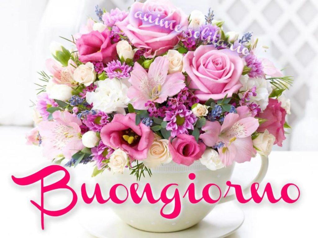 Immagini-Buongiorno-Belle_0026-1024x768