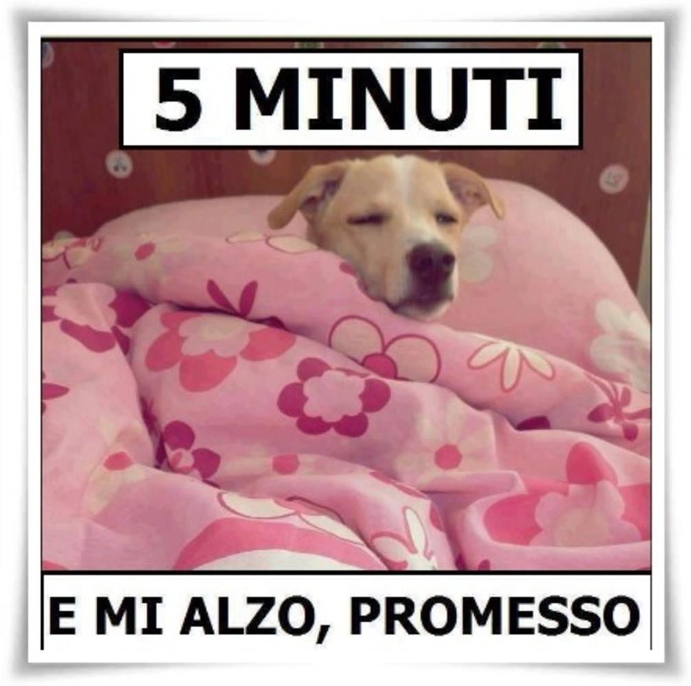 Immagini-Buongiorno-Buona-Giornata_010