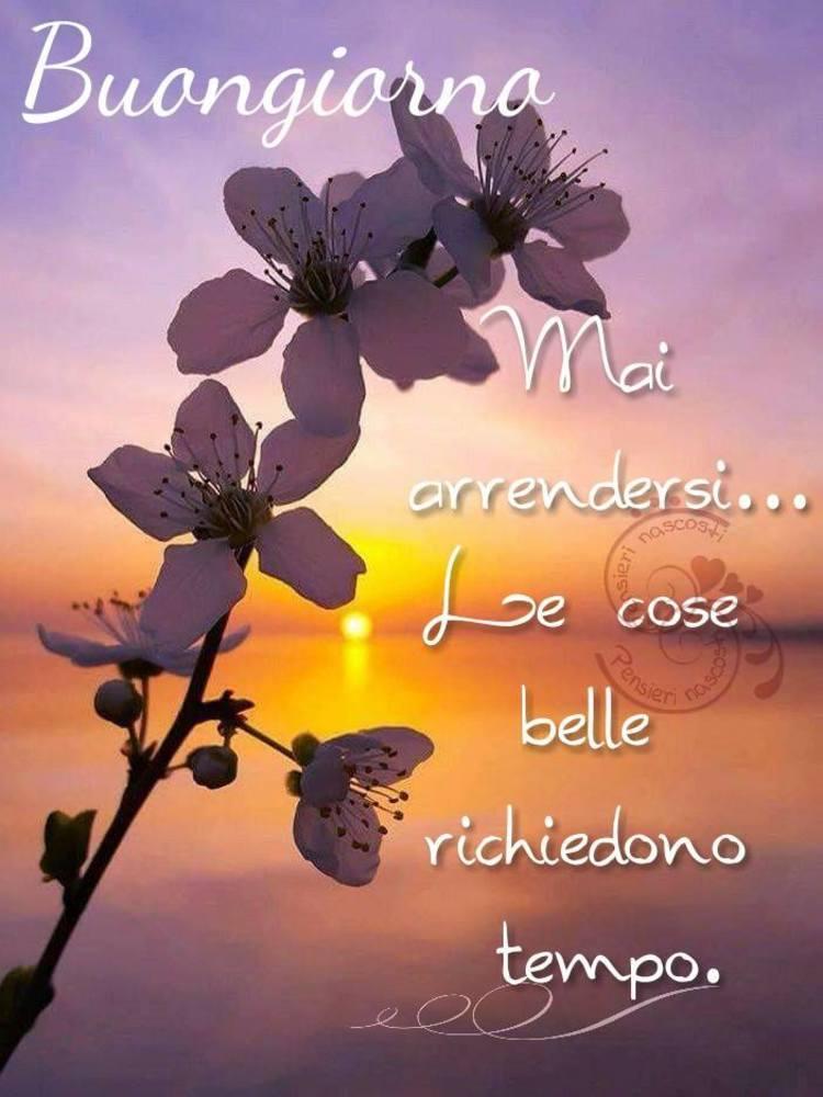 Immagini-Buongiorno-Buona-Giornata_016