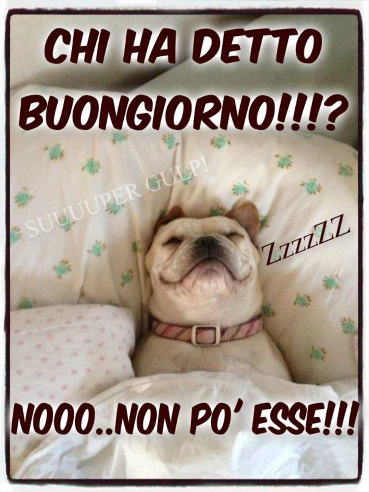 Immagini-Buongiorno-Buona-Giornata_035