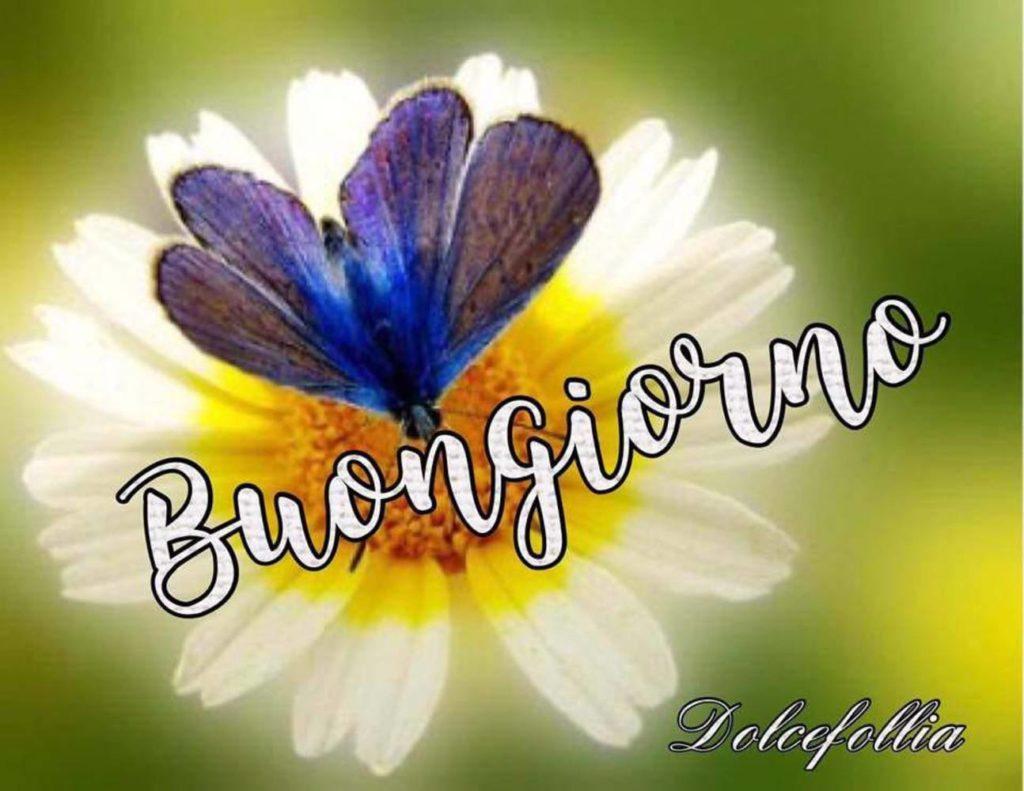 Immagini-Buongiorno-Buona-Giornata_041-1024x791