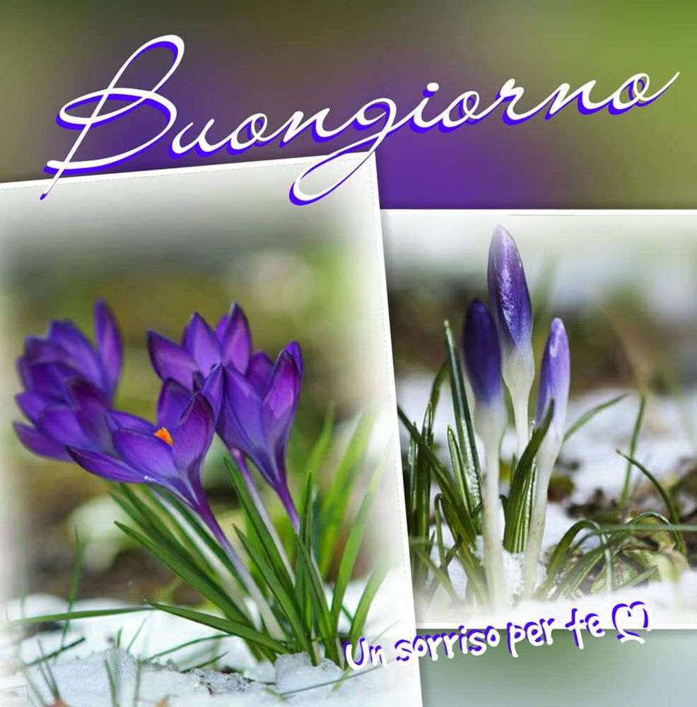 Immagini-Buongiorno-Buona-Giornata_052