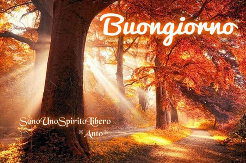 Immagini-Buongiorno-Nuove_0031-1024x679