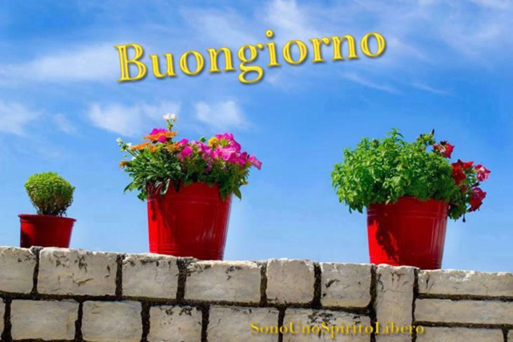 Immagini-Buongiorno-Nuove_0034-1024x683
