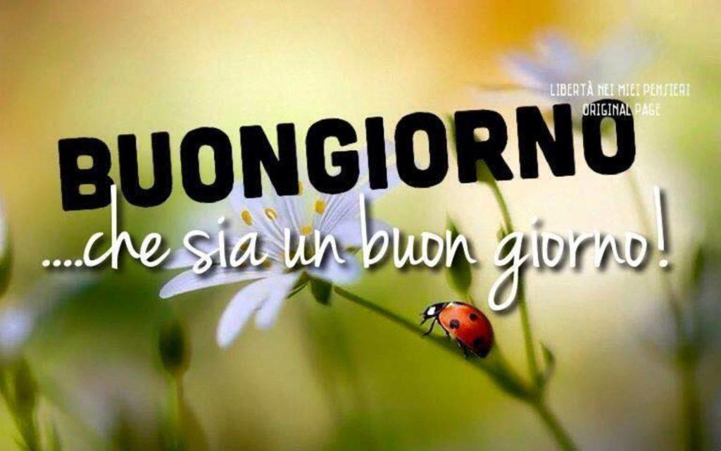 Immagini-Buongiorno-Nuove_0039-1024x640