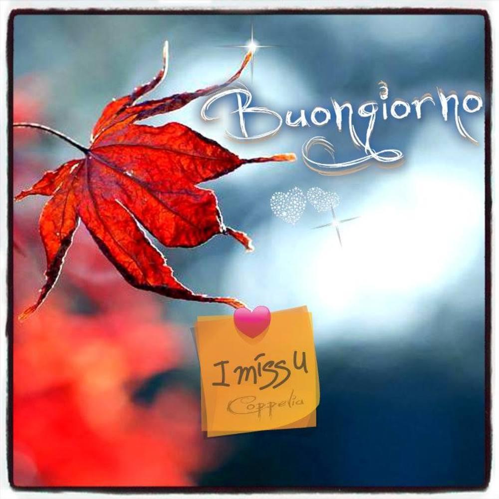 Immagini-Buongiorno-Nuove_0040