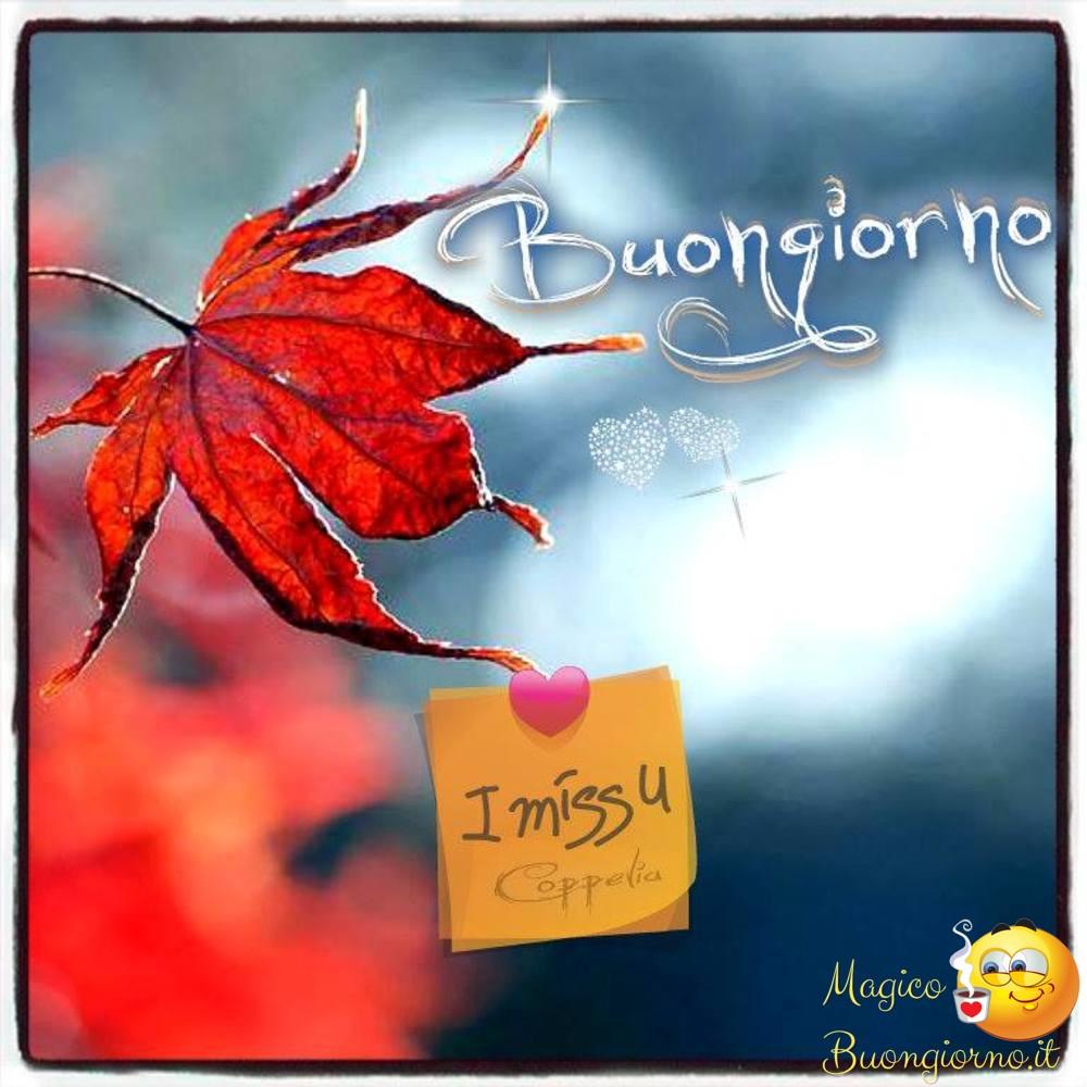 Immagini-Buongiorno_0014
