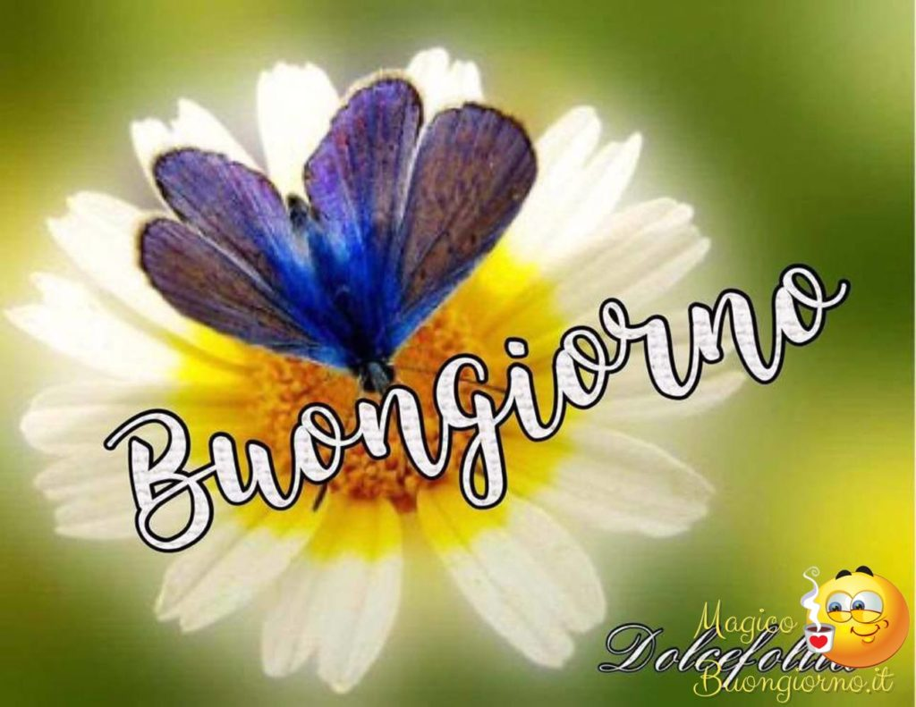 Immagini-Buongiorno_0054-1024x791