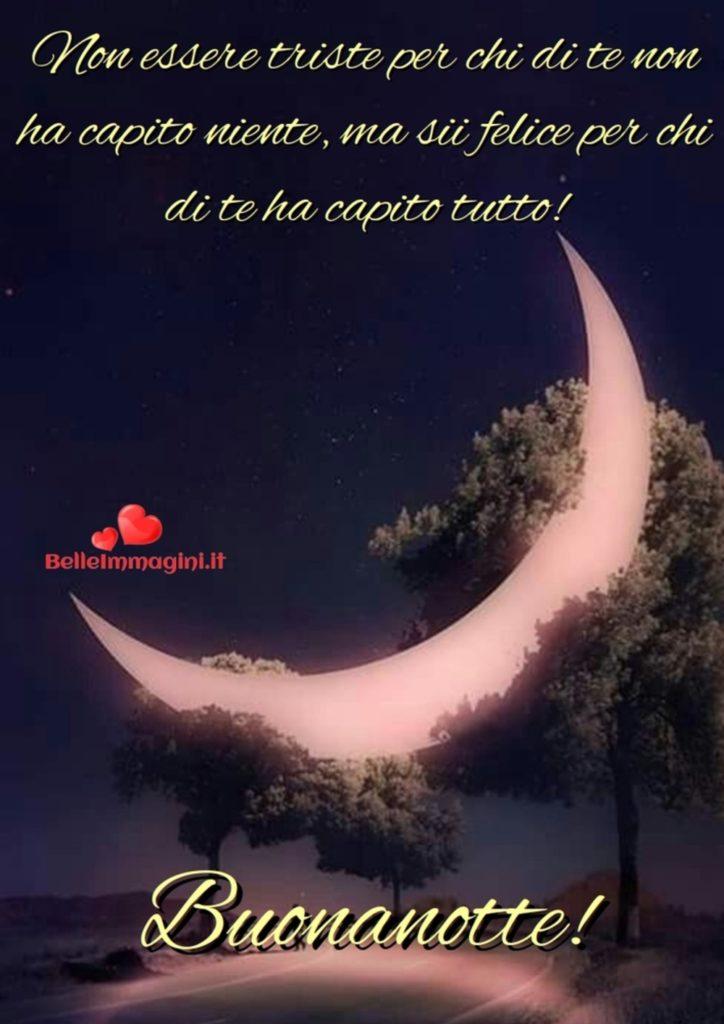 buonanotte-bacionotte-immagini_018-724x1024
