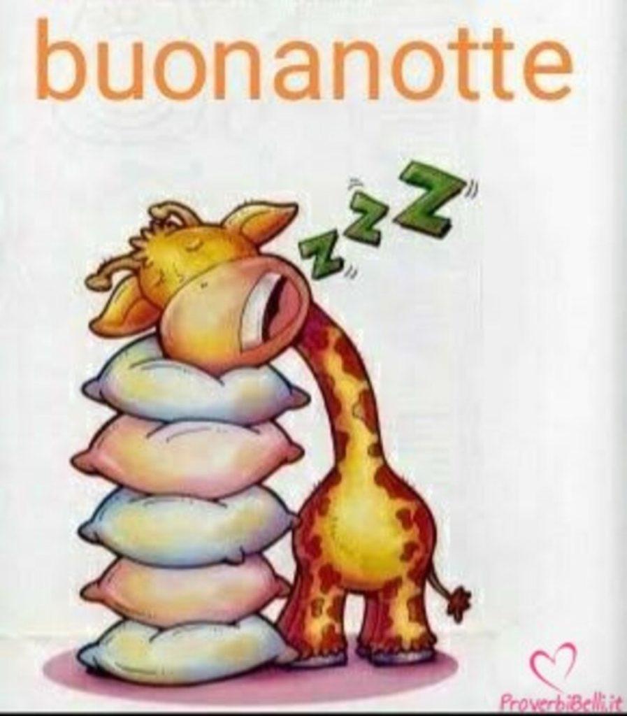 buonanotte-bacionotte-immagini_072-897x1024