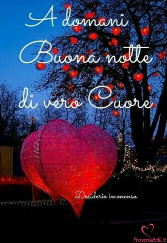 buonanotte-bacionotte-immagini_093-706x1024