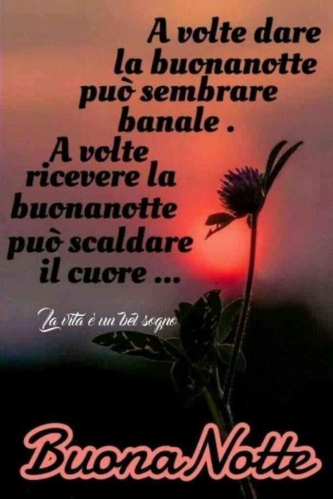 buonanotte-bacionotte-immagini_095-683x1024