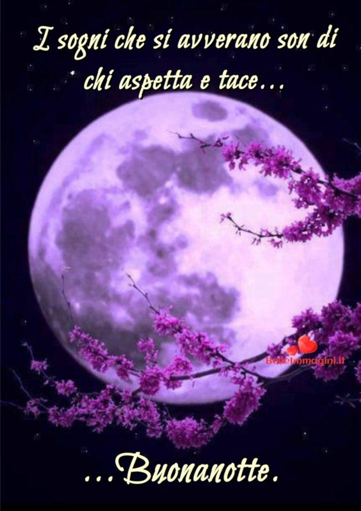 buonanotte-immagini_766-724x1024
