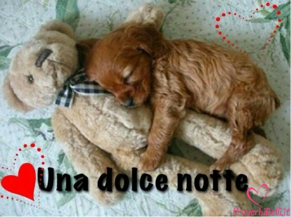 buonanotte-sogni-d-oro-immagini_081