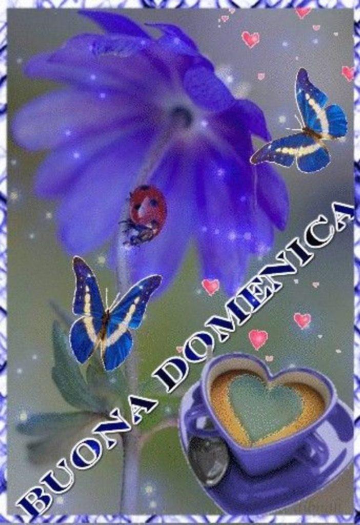 domenica-immagini-belle-nuove_191-702x1024