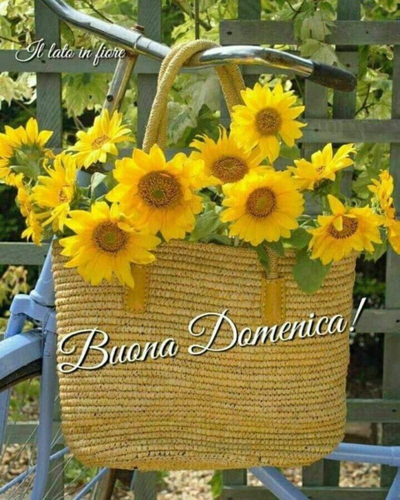 domenica-immagini-belle-nuove_247-819x1024