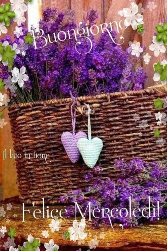 mercoledì-immagini-belle-nuove_098-683x1024