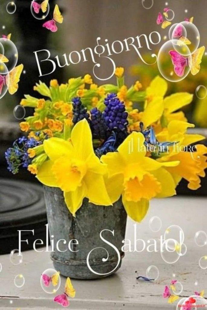 sabato-immagini-belle-nuove_139-685x1024